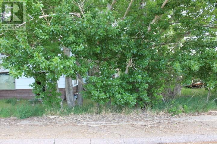 90-101-113 2nd Ave W, Shaunavon, Saskatchewan  S0N 2M0 - Photo 3 - SK712466
