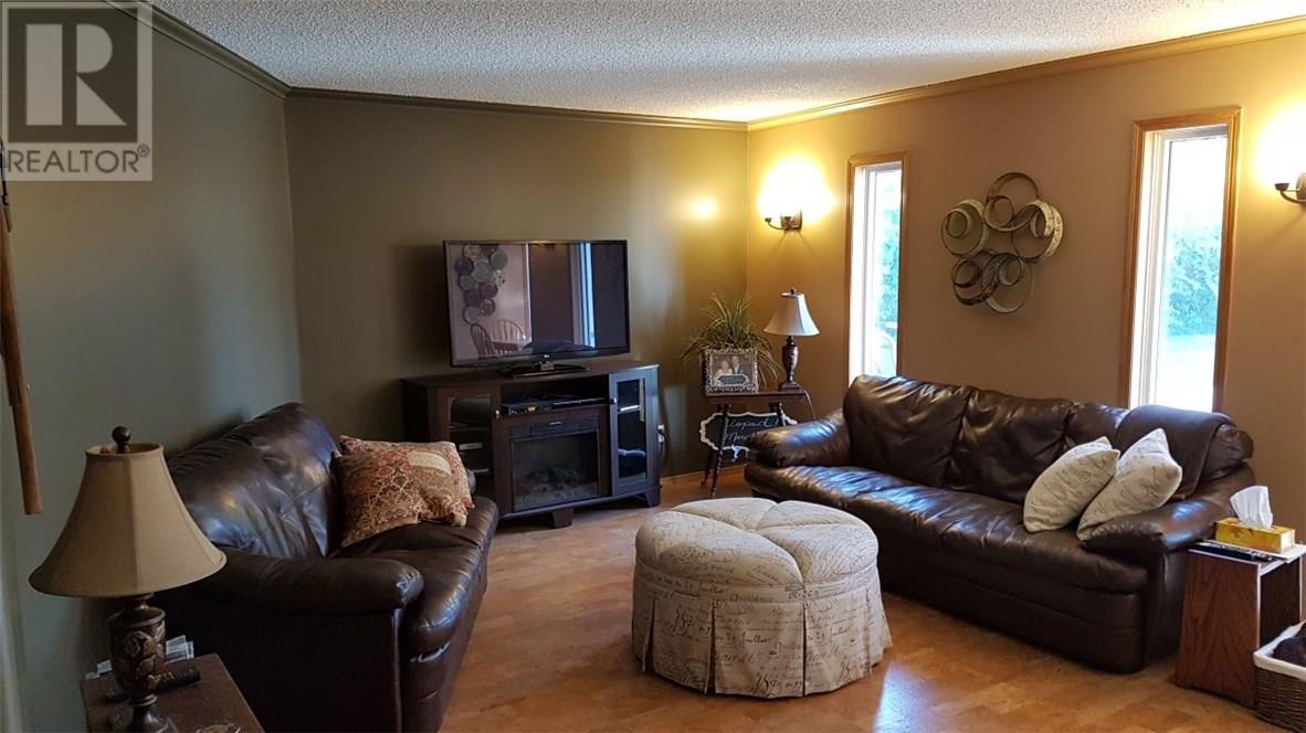 405 Balmoral Ave, Arcola, Saskatchewan  S0C 0G0 - Photo 7 - SK713141