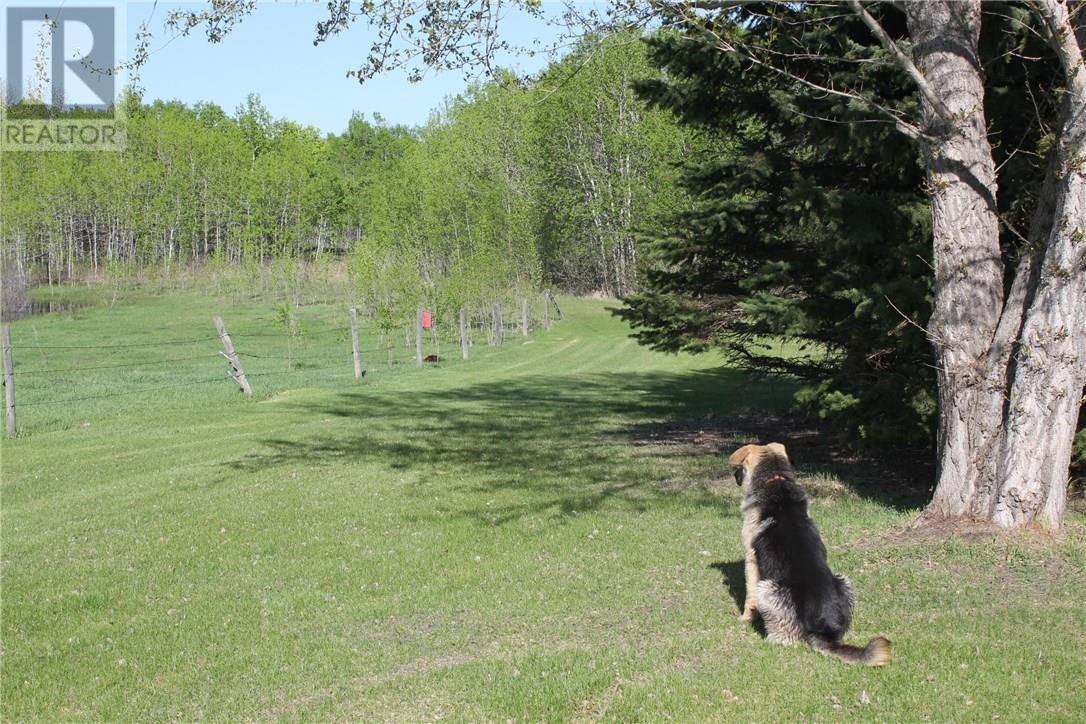 Rm Of Orkney, Willowbrook, Saskatchewan  S3N 2W8 - Photo 25 - SK715418