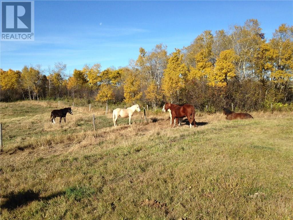 Rm Of Orkney, Willowbrook, Saskatchewan  S3N 2W8 - Photo 28 - SK715418