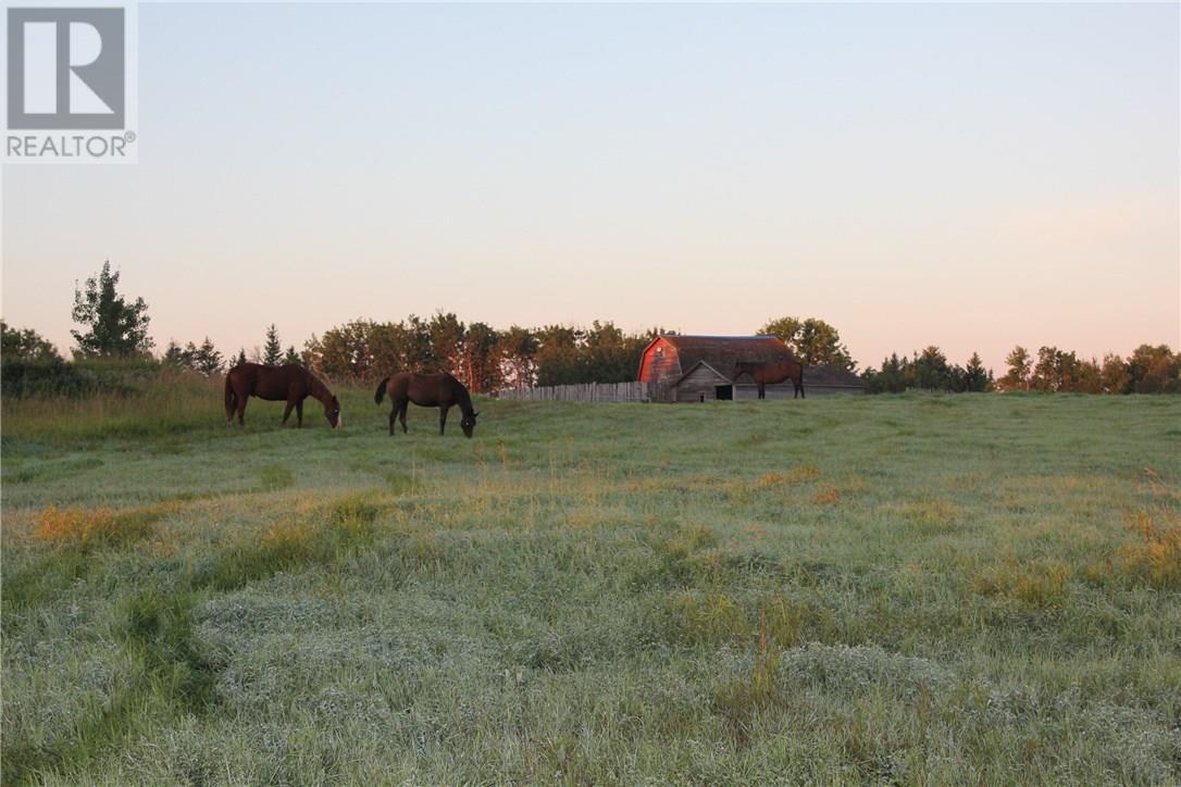 Rm Of Orkney, Willowbrook, Saskatchewan  S3N 2W8 - Photo 32 - SK715418