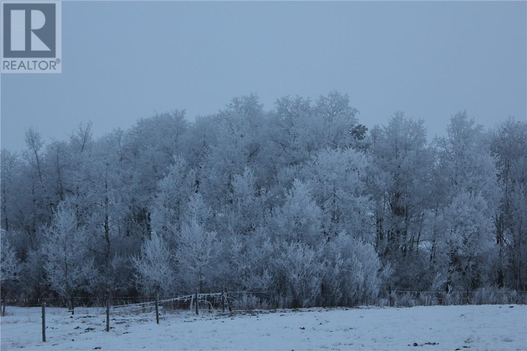 Rm Of Orkney, Willowbrook, Saskatchewan  S3N 2W8 - Photo 35 - SK715418