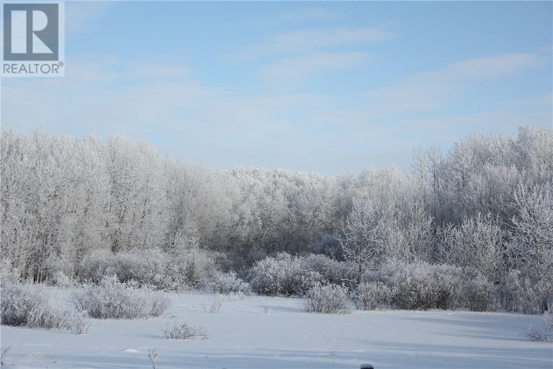 Rm Of Orkney, Willowbrook, Saskatchewan  S3N 2W8 - Photo 37 - SK715418