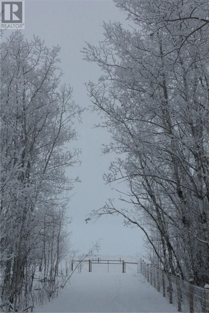 Rm Of Orkney, Willowbrook, Saskatchewan  S3N 2W8 - Photo 38 - SK715418