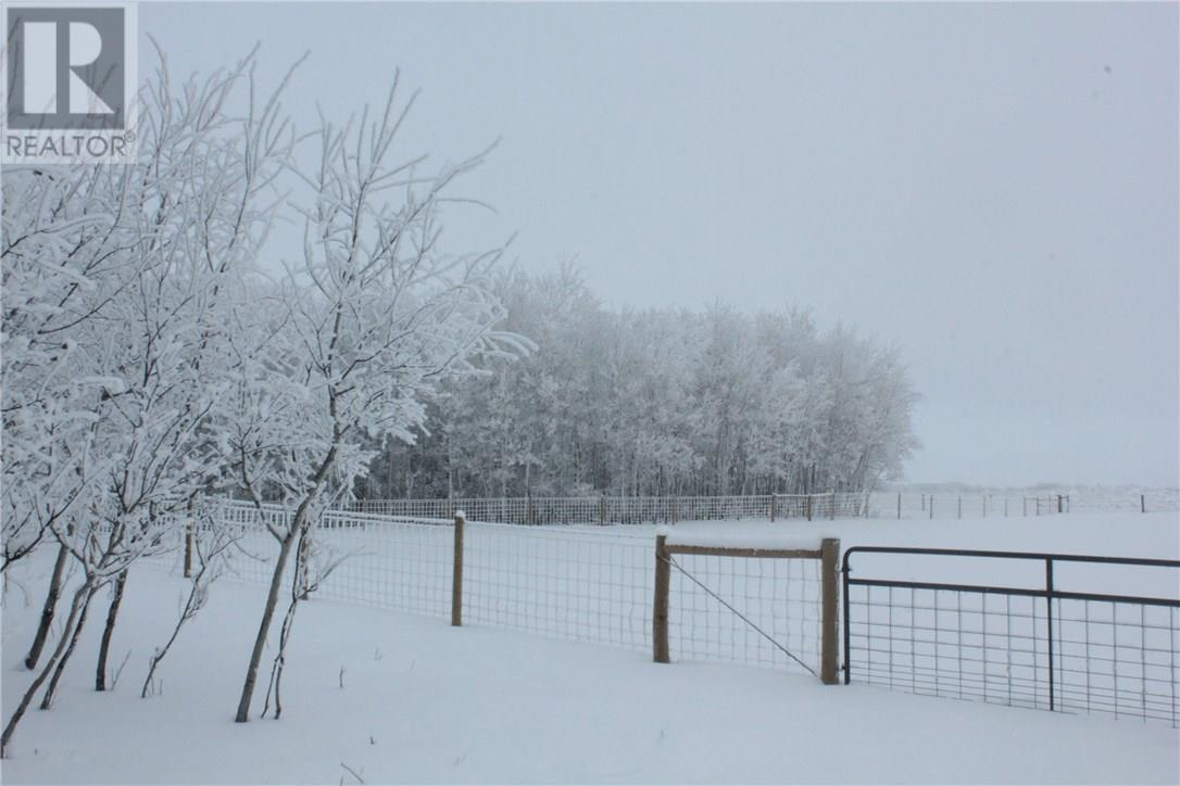 Rm Of Orkney, Willowbrook, Saskatchewan  S3N 2W8 - Photo 39 - SK715418