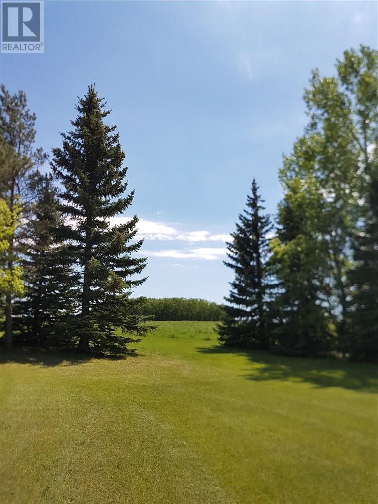 334 3rd Ave, Edenwold, Saskatchewan  S0G 1K0 - Photo 11 - SK716063