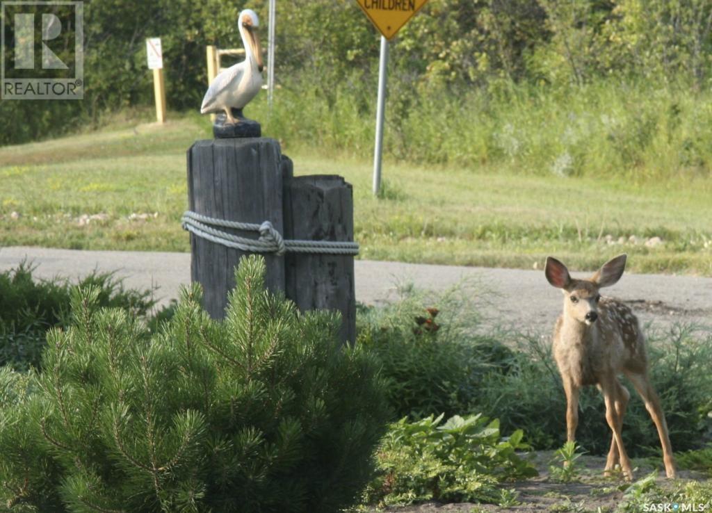 772 Grand Ave, Buena Vista, Saskatchewan  S2V 1A2 - Photo 2 - SK719765