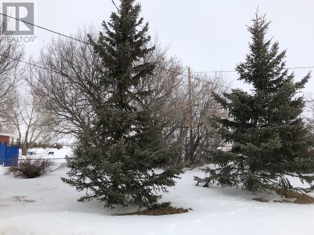 437 East St, Bethune, Saskatchewan  S0G 0H0 - Photo 12 - SK724092