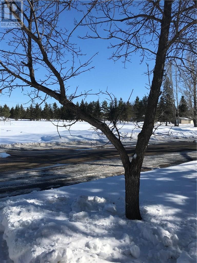 310 Aberdeen St, Cupar, Saskatchewan  S0G 0Y0 - Photo 44 - SK724602